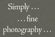 Simply fine photography